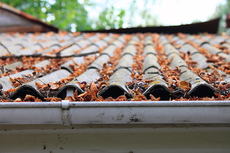 Dirty Roof and Gutter