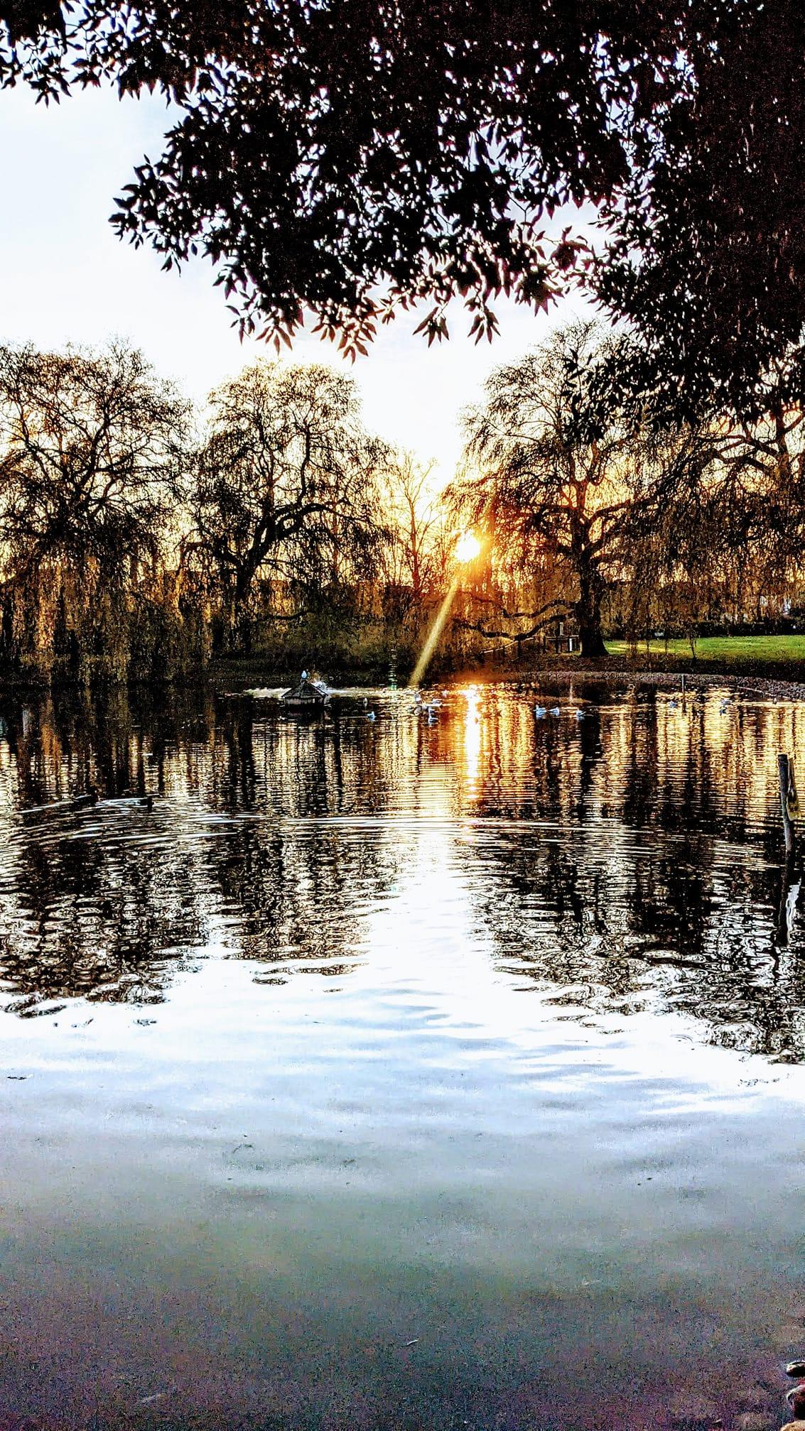 Rosebery-Park-Epsom-Sunset